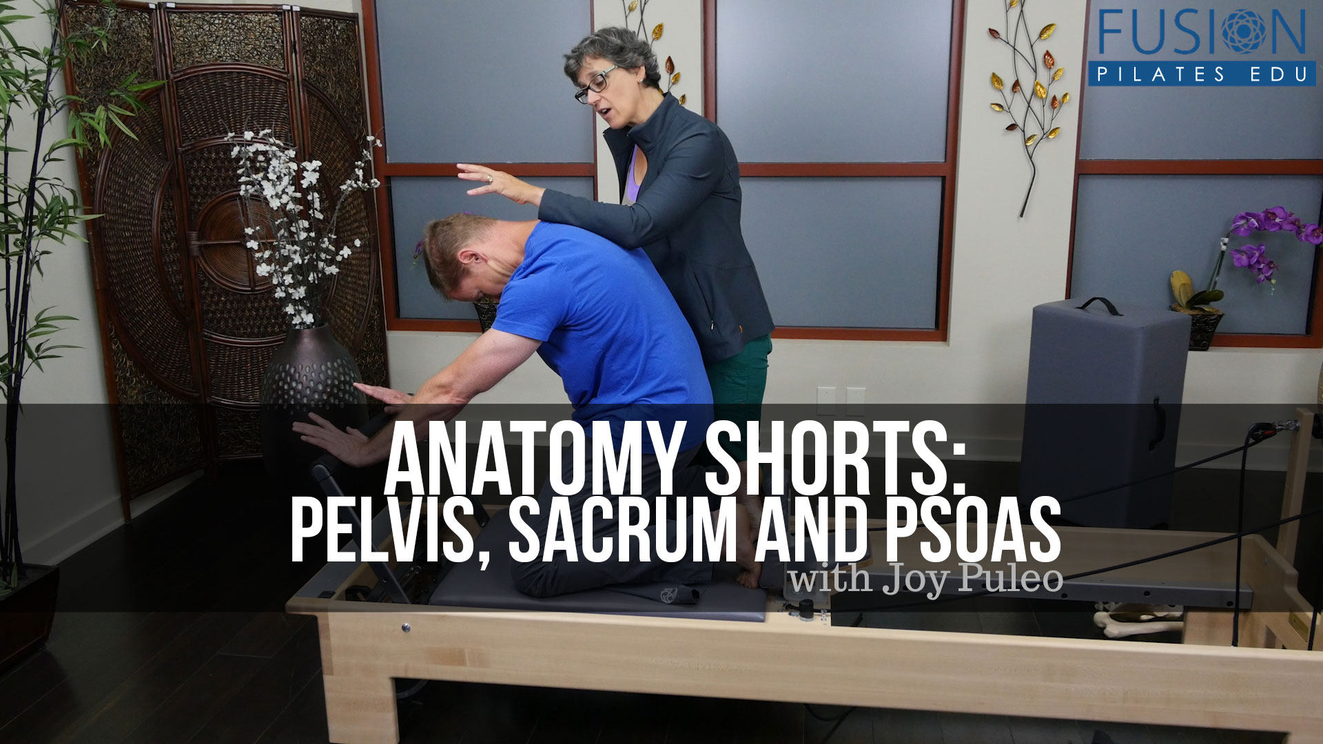 Anatomy Shorts: Pelvis, Sacrum and Psoas | FusionPilatesEDU com